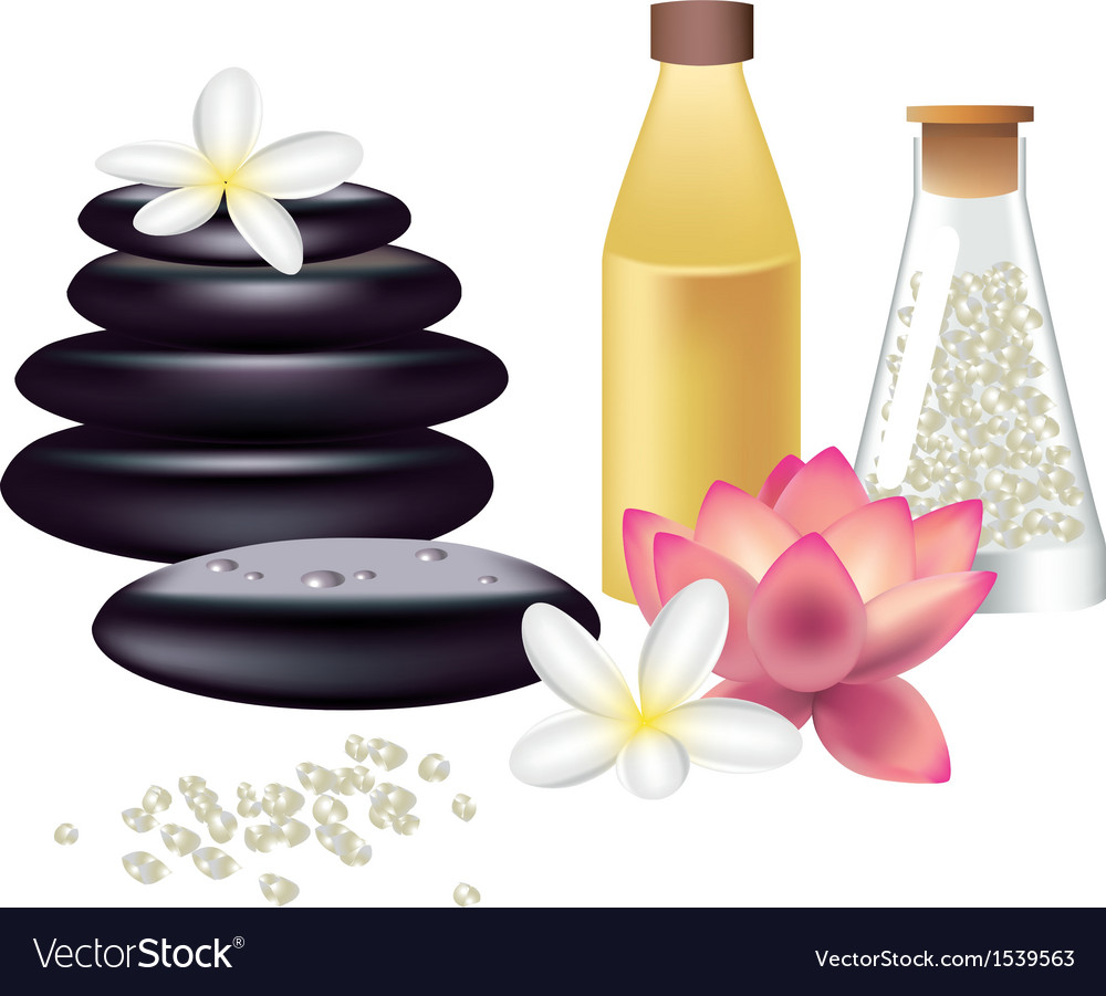Spa still life isolated on white vector | Price: 1 Credit (USD $1)