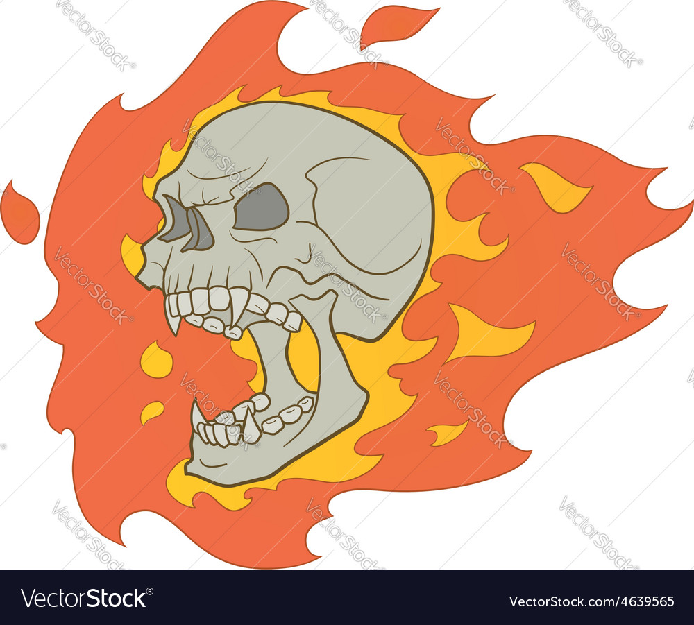 Skull with fire vector | Price: 1 Credit (USD $1)
