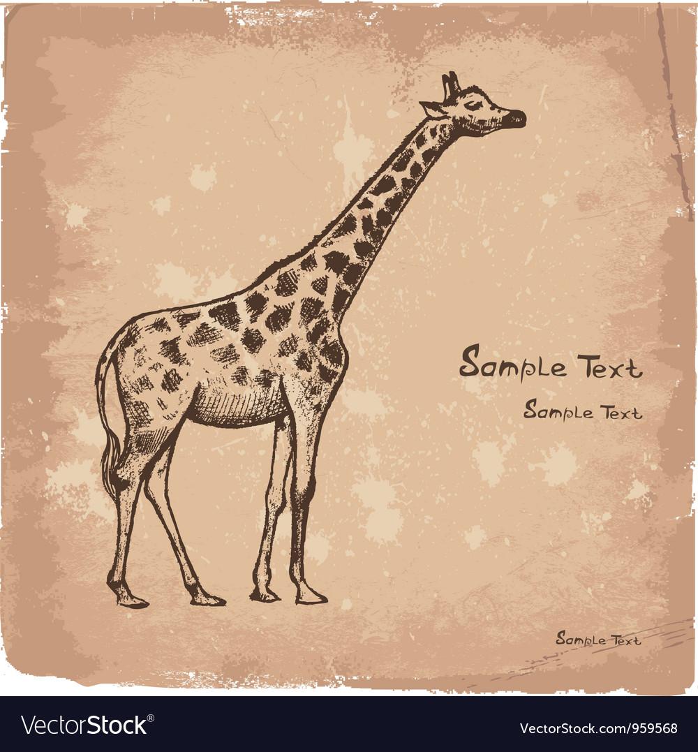 Art giraffe2 vector | Price: 1 Credit (USD $1)