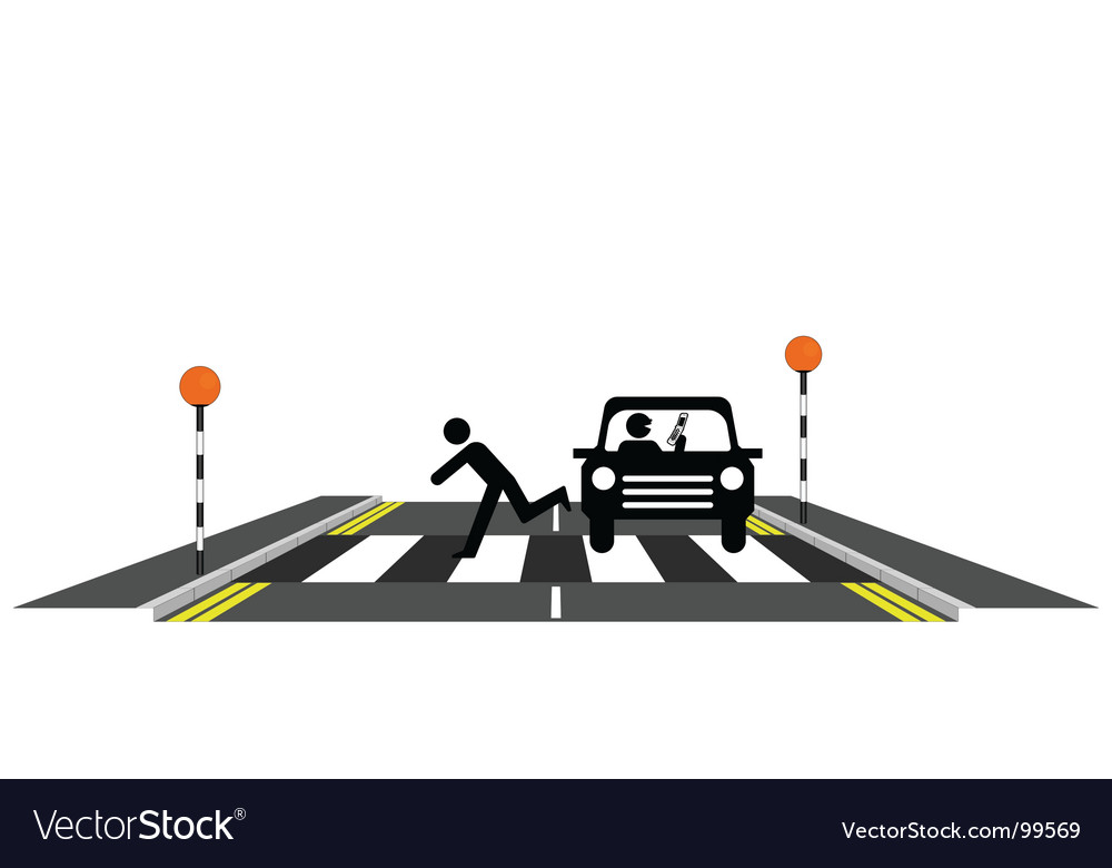 Zebra crossing reckless driver vector | Price: 1 Credit (USD $1)