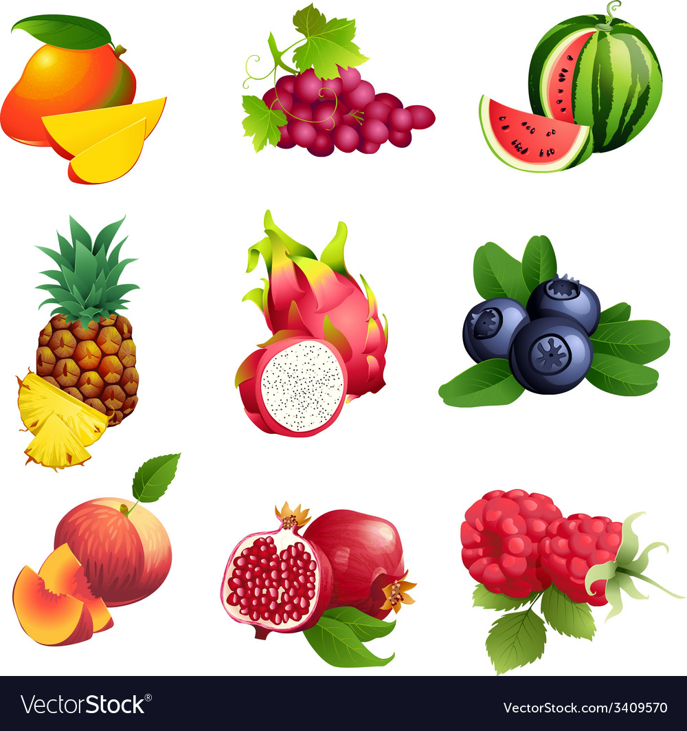 Set of fruits and berries with leaves vector | Price: 1 Credit (USD $1)