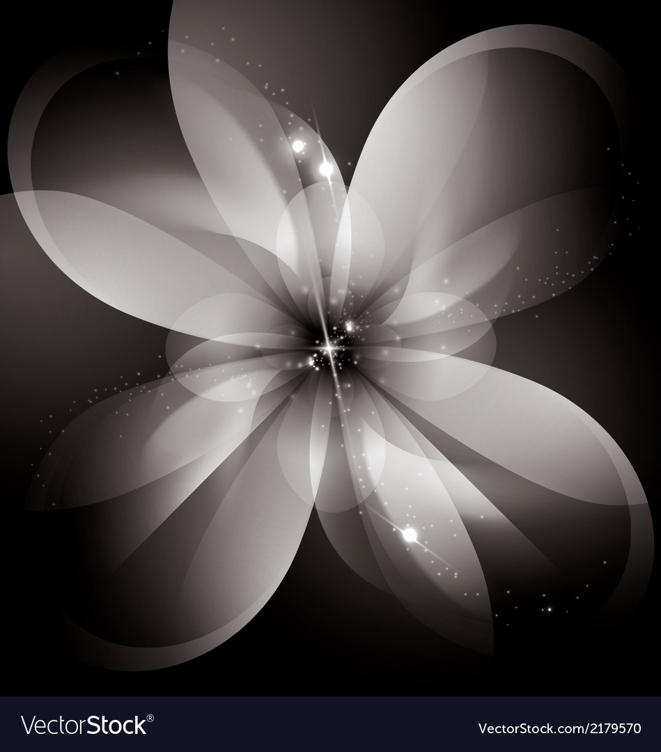 Star flower vector | Price: 1 Credit (USD $1)