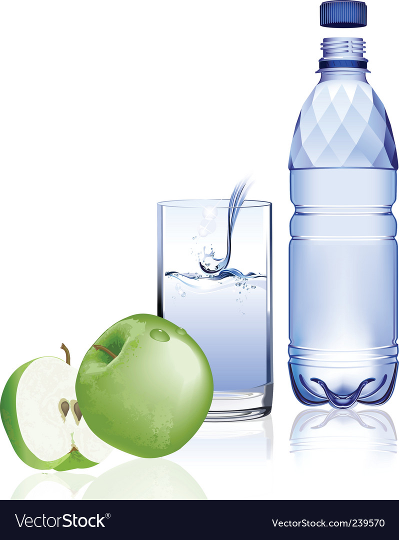 Water bottle and apple vector | Price: 3 Credit (USD $3)