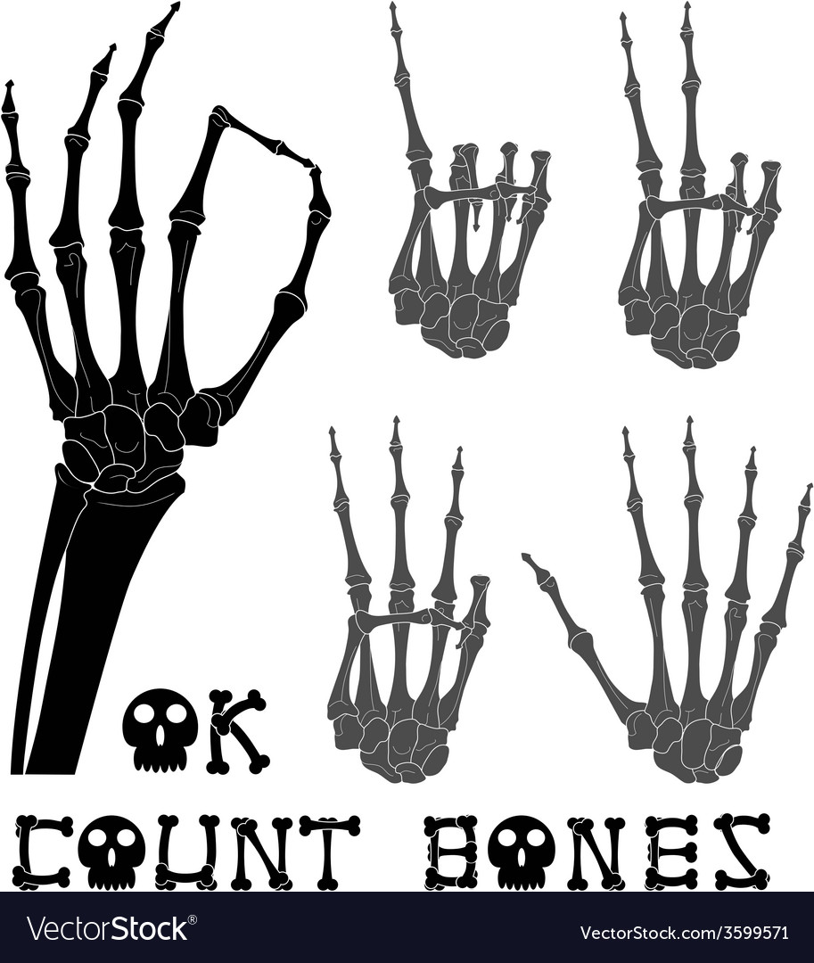 Count bones vector | Price: 1 Credit (USD $1)