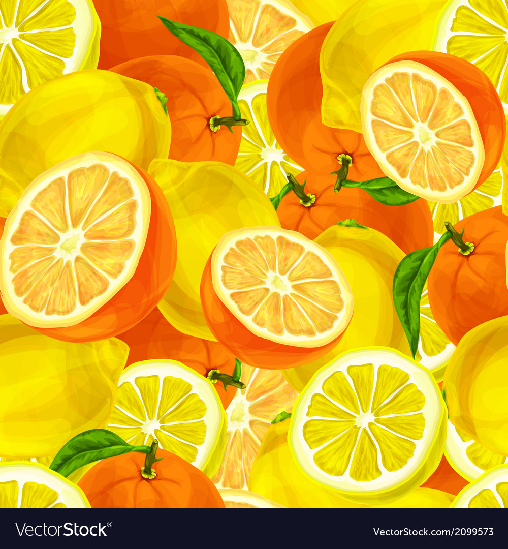 Citrus fruits seamless background vector | Price: 1 Credit (USD $1)