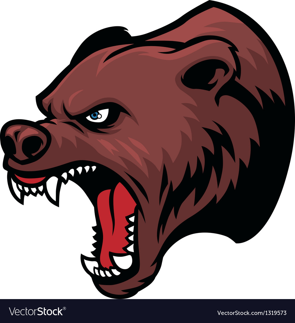 Grizzly bear head vector | Price: 1 Credit (USD $1)