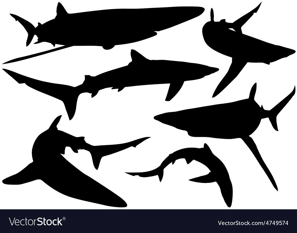 Blue shark silhouettes vector | Price: 1 Credit (USD $1)