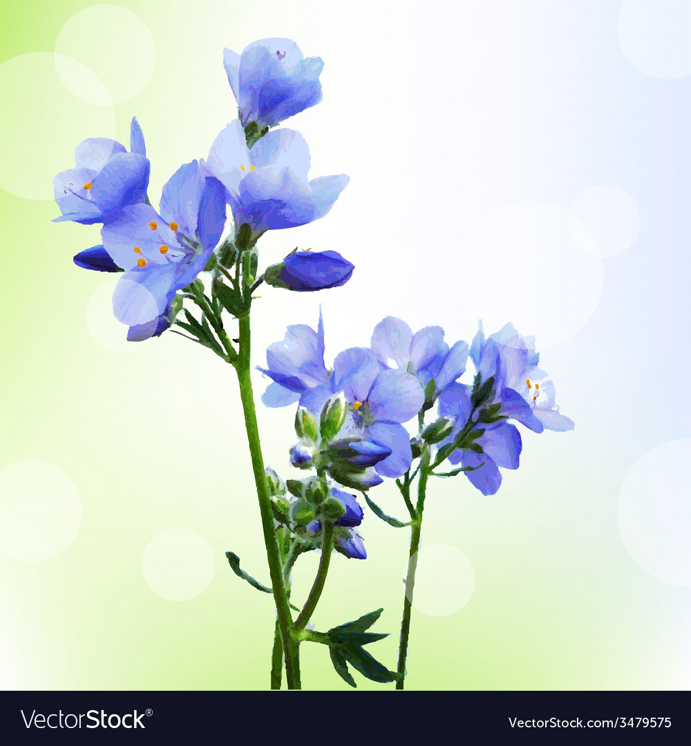 Blue watercolor flowers with bokeh vector   Price: 1 Credit (USD $1)