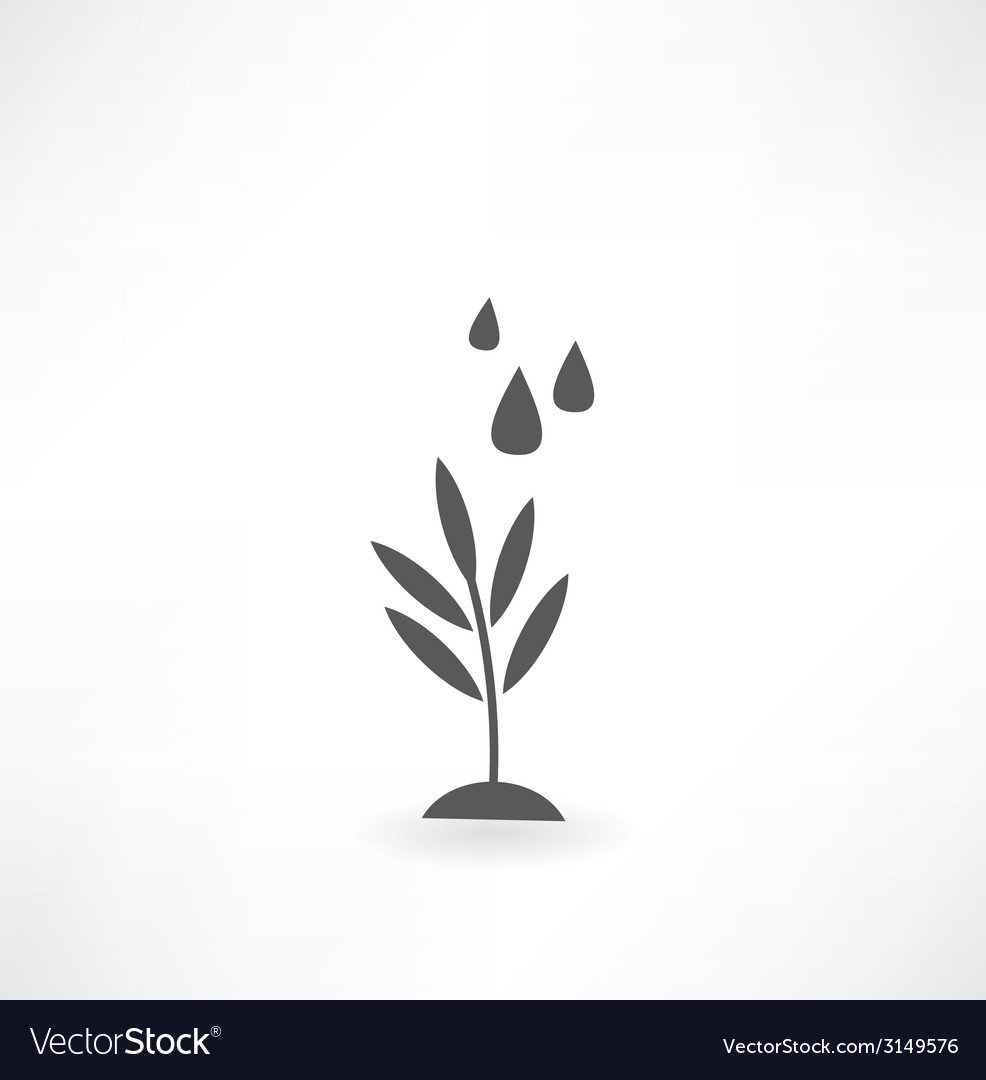 Watering of grass water drops icon vector | Price: 1 Credit (USD $1)