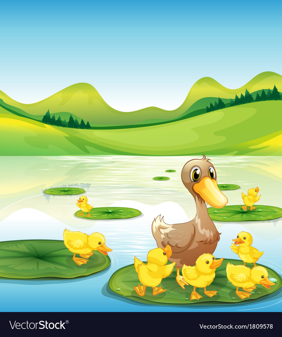 A duck and her ducklings at the pond vector | Price: 1 Credit (USD $1)