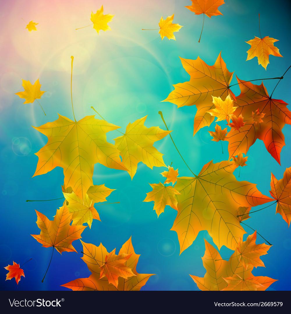 Beautiful autumn leaves vector   Price: 1 Credit (USD $1)