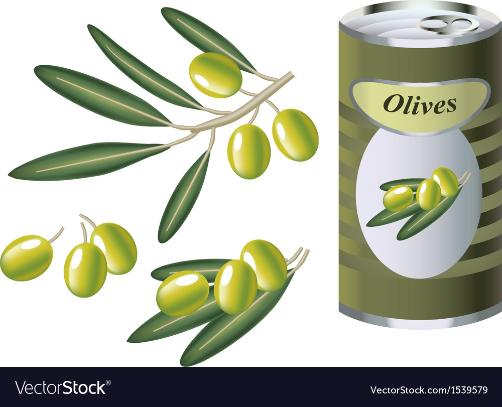 Green olive branch and bank of green olives vector | Price: 1 Credit (USD $1)