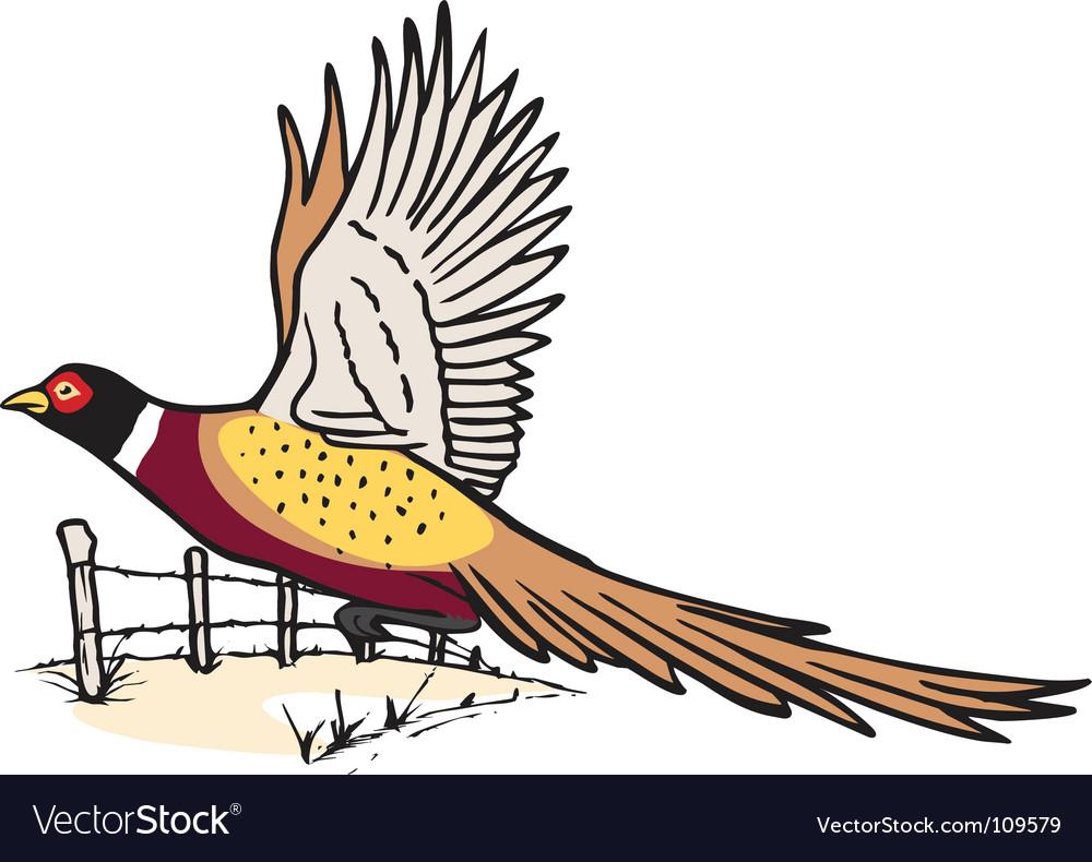 Pheasant in flight vector | Price: 1 Credit (USD $1)