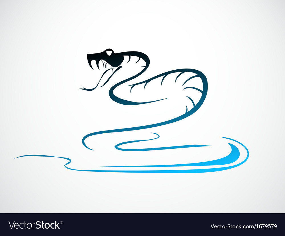 Snake b vector | Price: 1 Credit (USD $1)