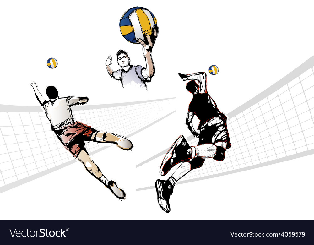 Volleyball trio vector | Price: 1 Credit (USD $1)