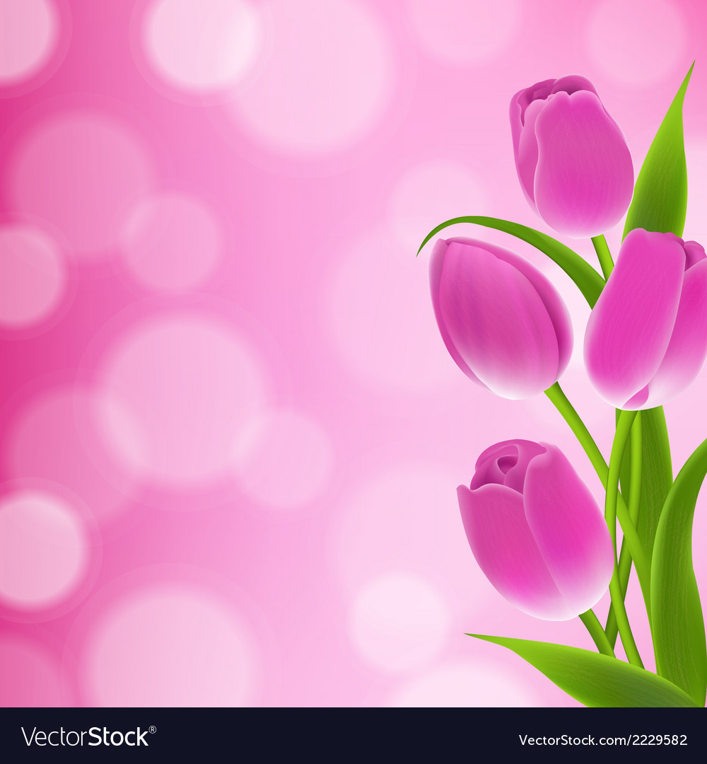 Border of tulips vector | Price: 1 Credit (USD $1)