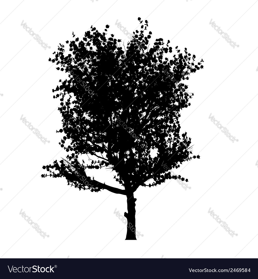 Red apple tree silhouette vector | Price: 1 Credit (USD $1)