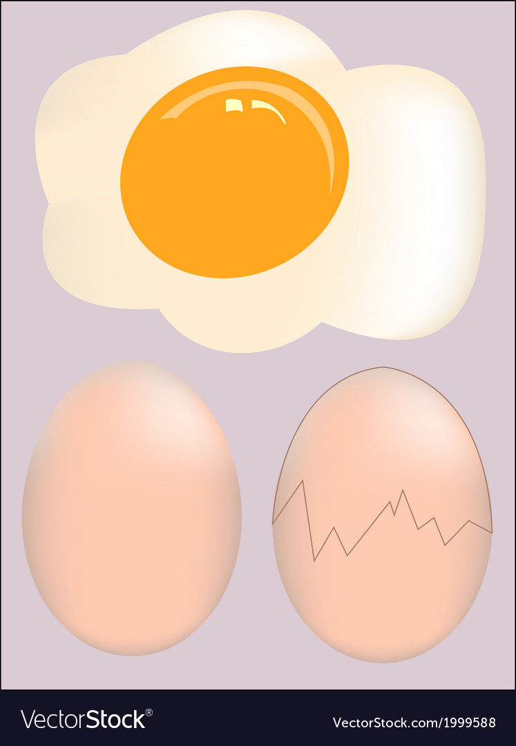 Isolated broken egg on white background vector | Price: 1 Credit (USD $1)