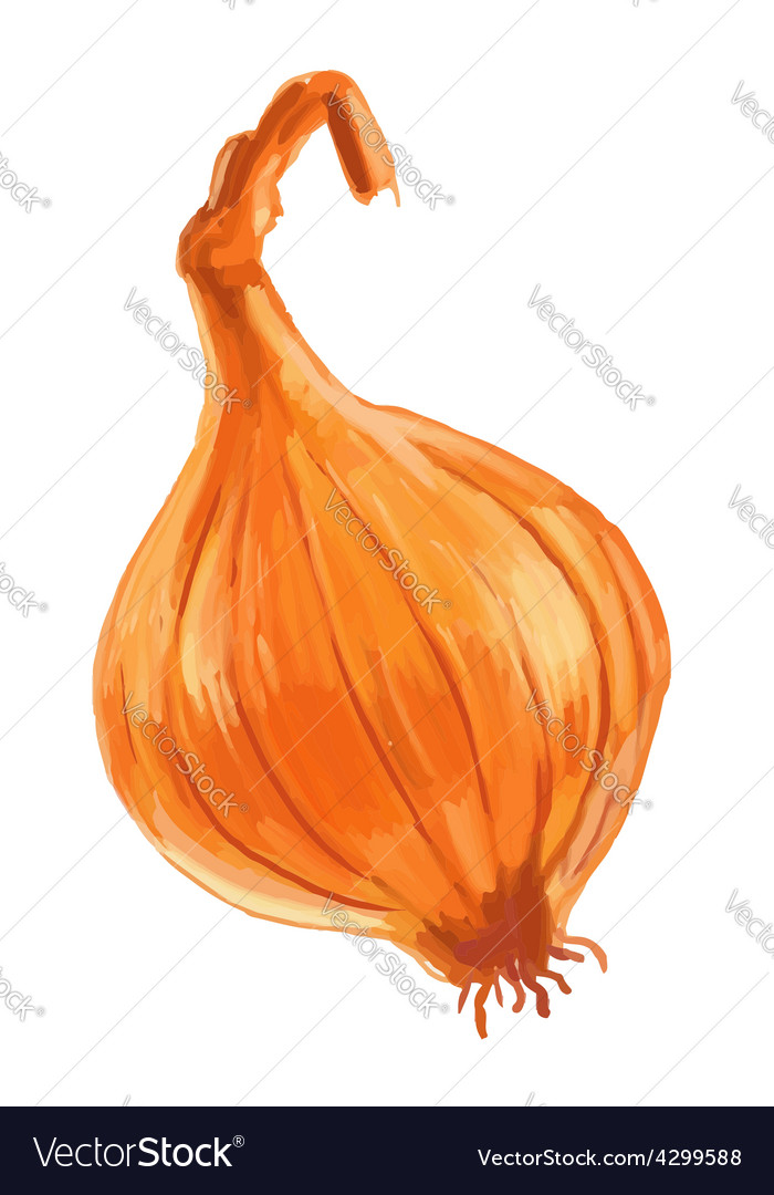 Picture of pumpkin vector | Price: 3 Credit (USD $3)