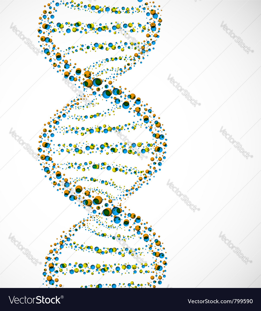 Dna strand molecule vector | Price: 1 Credit (USD $1)