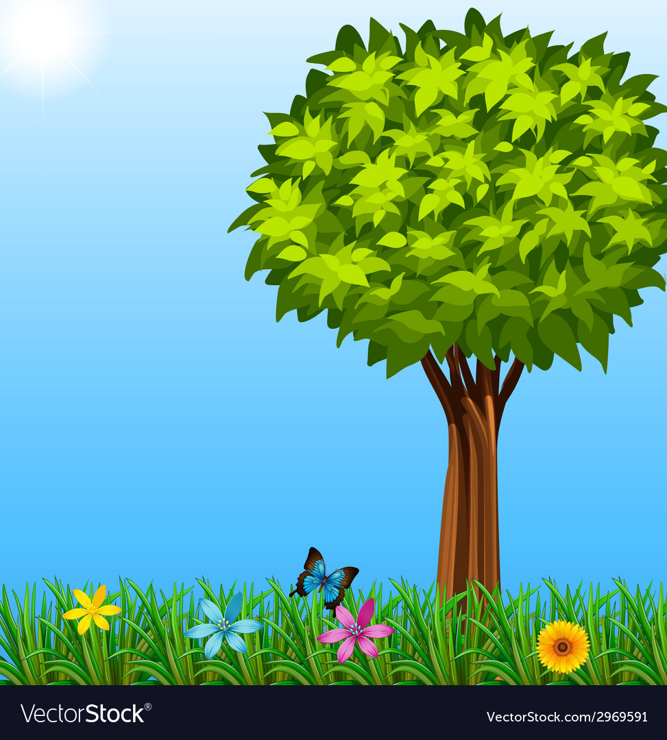 A tree at the garden vector | Price: 1 Credit (USD $1)