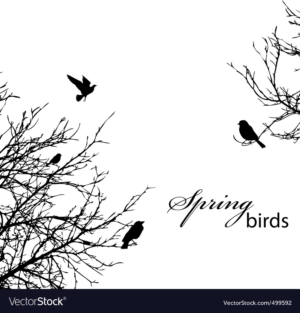 Trees and birds vector | Price: 1 Credit (USD $1)