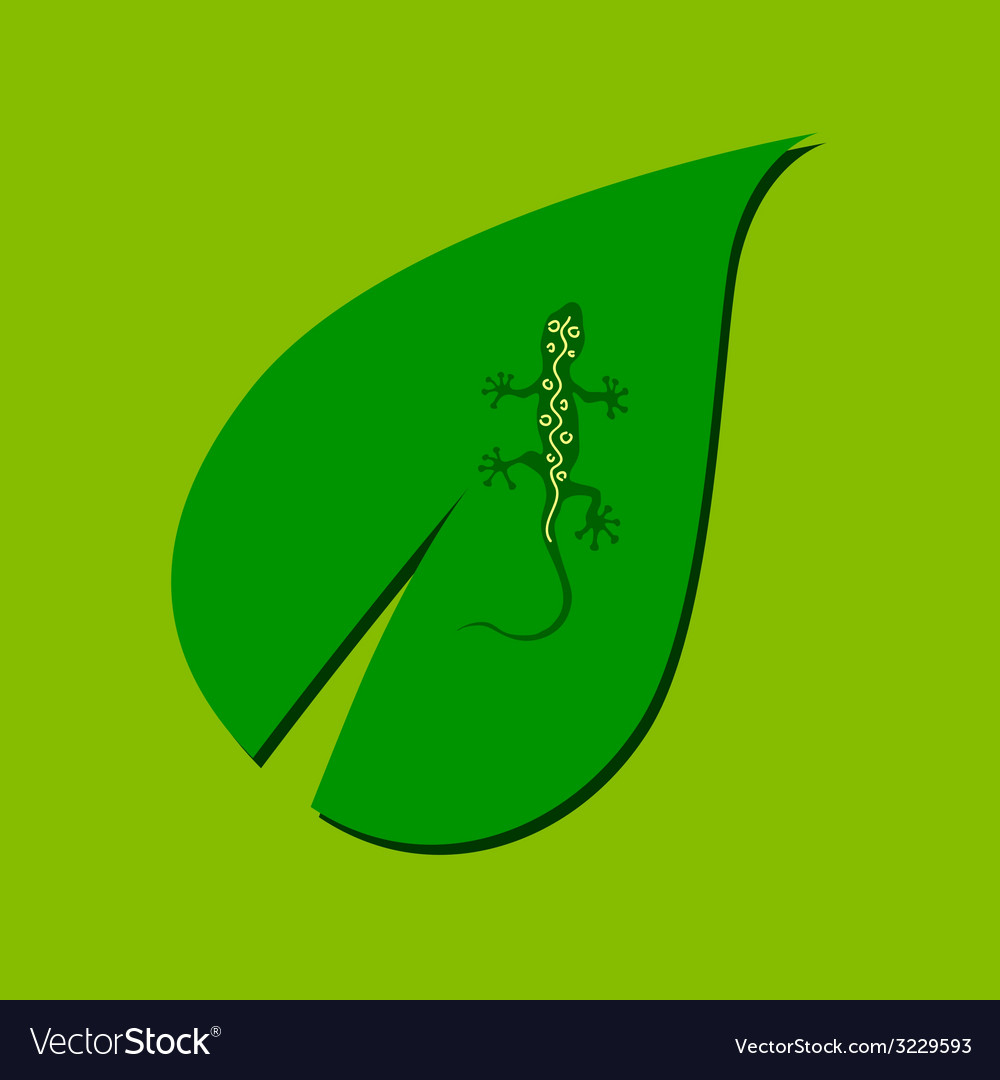 Lizard on the leaf color vector | Price: 1 Credit (USD $1)