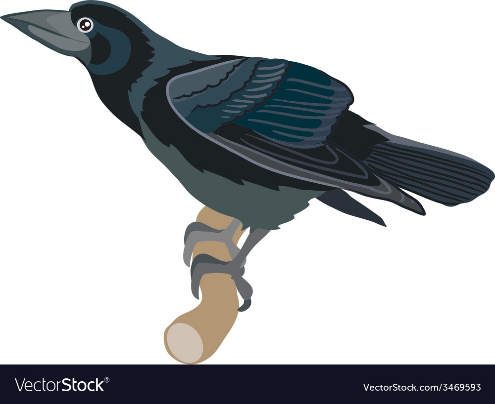 Rook vector | Price: 1 Credit (USD $1)