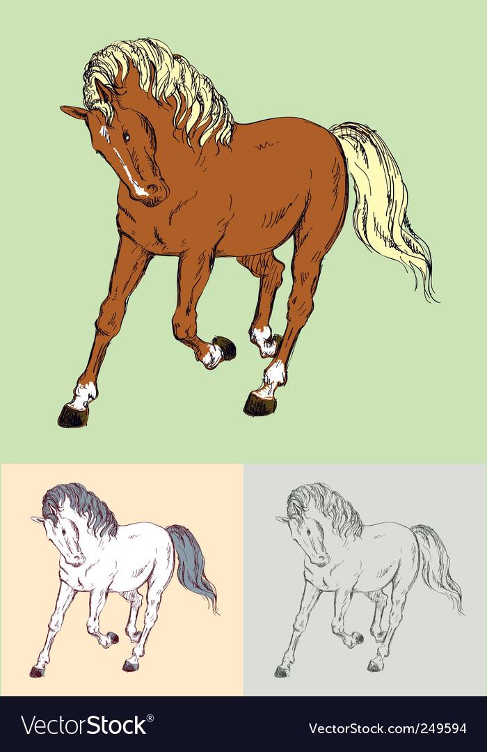 Horse vector   Price: 1 Credit (USD $1)