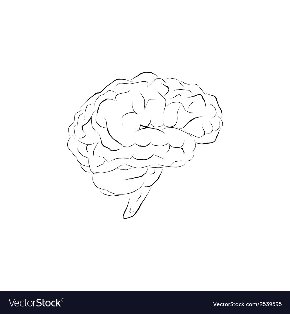 Doodle brain vector | Price: 1 Credit (USD $1)