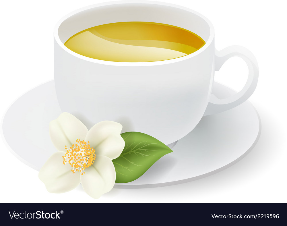 Jasmine tea cup vector | Price: 1 Credit (USD $1)
