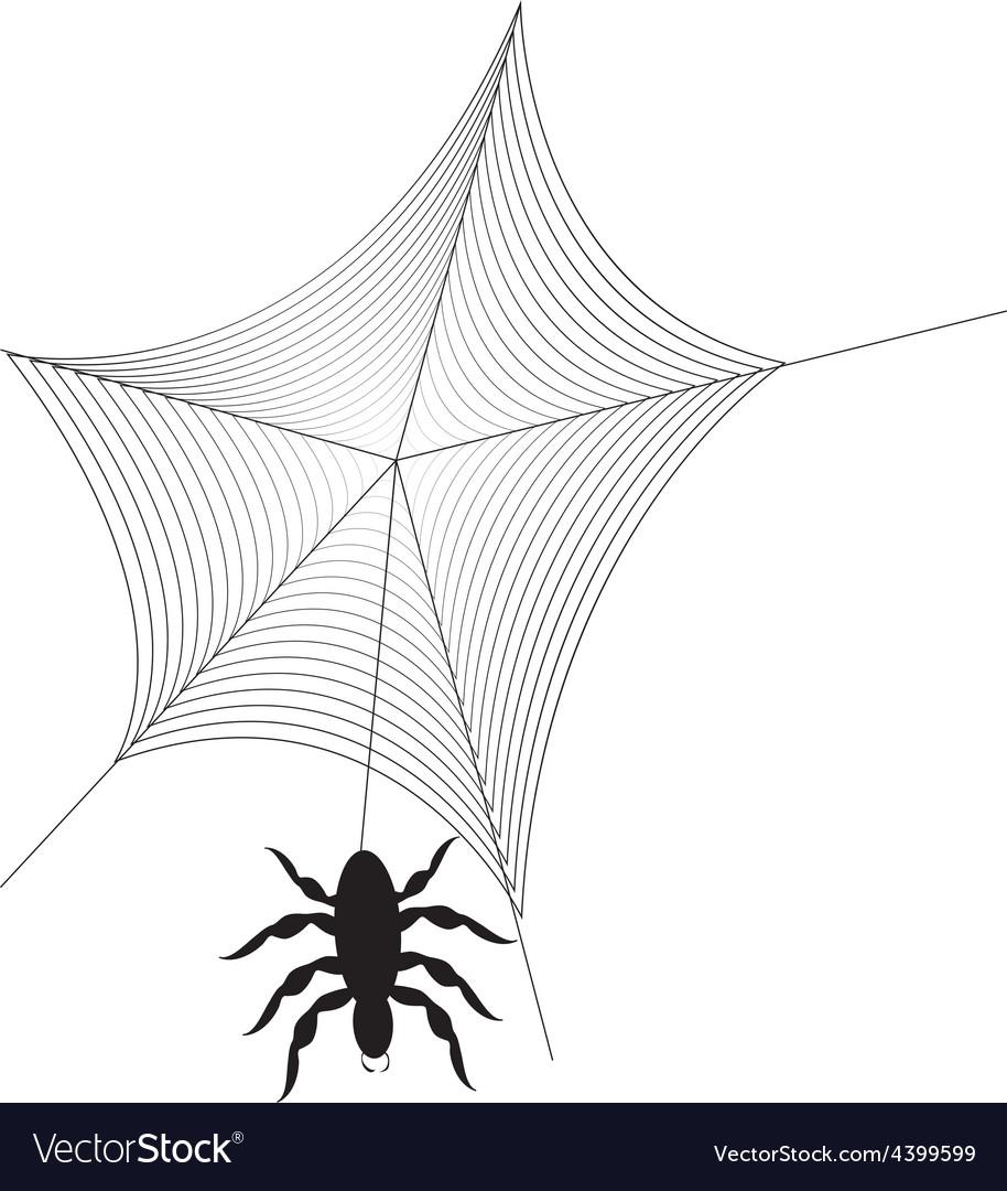 Spider web vector | Price: 3 Credit (USD $3)