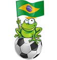 Frog cartoon with soccer ball vector