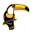 Bird toucan on a white background vector
