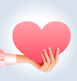 Female hand holding pink heart vector