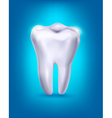 White tooth on a blue background vector