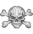 Skull sketch design vector