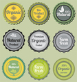 Badges vector