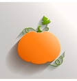 Abstract pumpkin over white background vector
