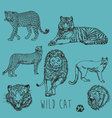 Wild cat marker sketch collection vector