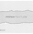Realistic lacerated white paper texture vector