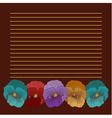 Brown background with 5 pansies vector