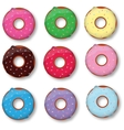 Colorful delicious donuts isolated on white vector