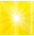 Abstract yellow brighy summer background vector