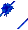 Decorative ribbon and bow on a background vector