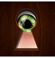 Interested eye looking in keyhole vector