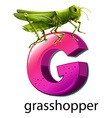 A letter g for grasshopper vector