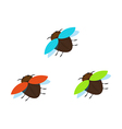 Three brown bugs with different color wings vector