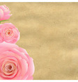 Pink rose with old paper vector