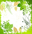 Grunge frame with plants elements vector